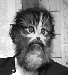 Picture of Saddam Hussein with his face replaced by that of a kitten